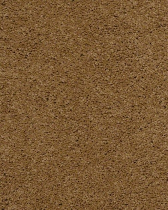 Shaw Walnut Ridge Granola Ventura Flooring